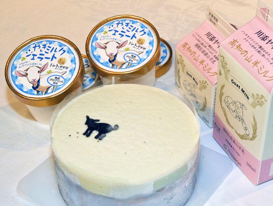 ミルク、ジェラート、チーズケーキなど、8月以降に発売する、抗体を配合した新商品