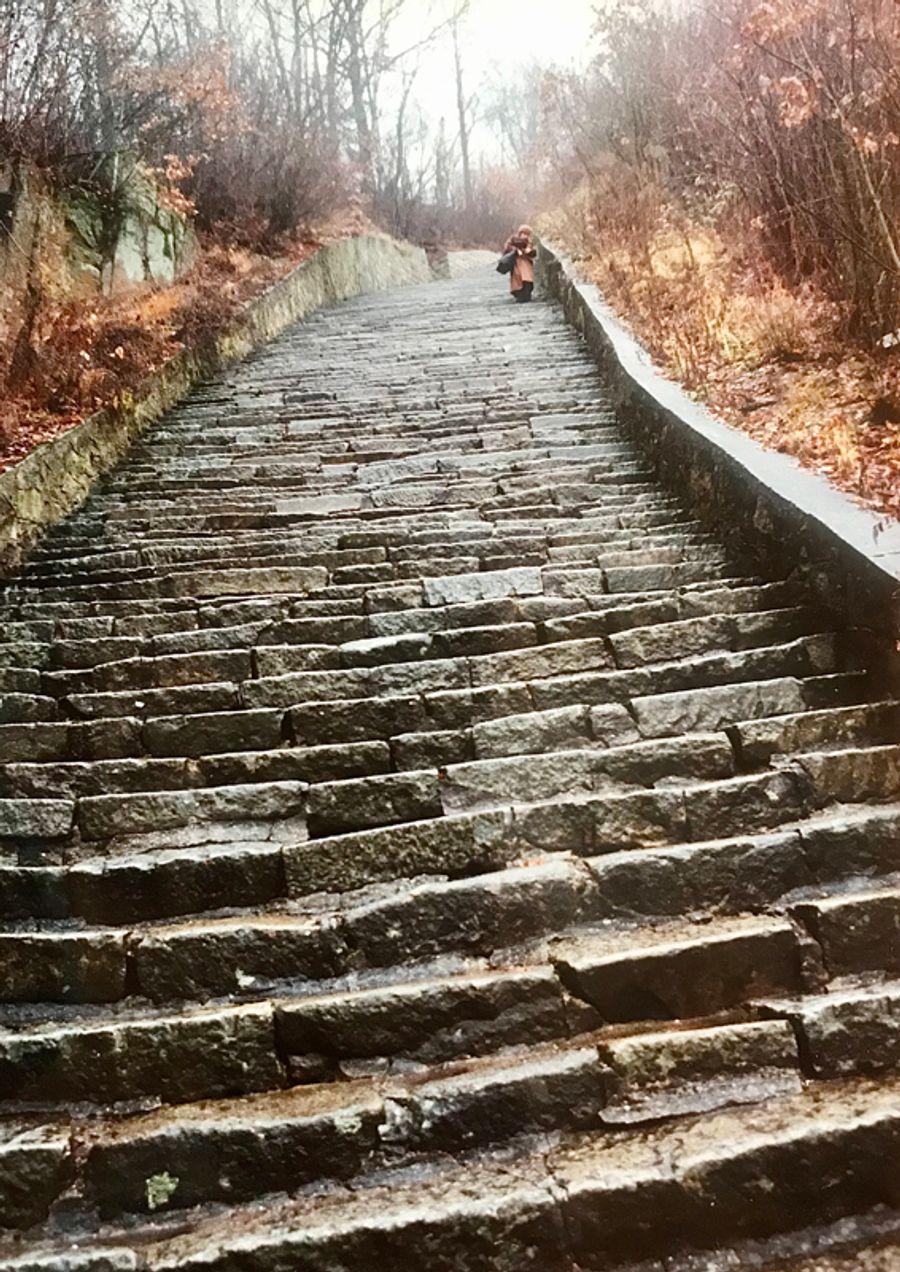 「死の石段」。父を殺されたユダヤの女性が降りてくる