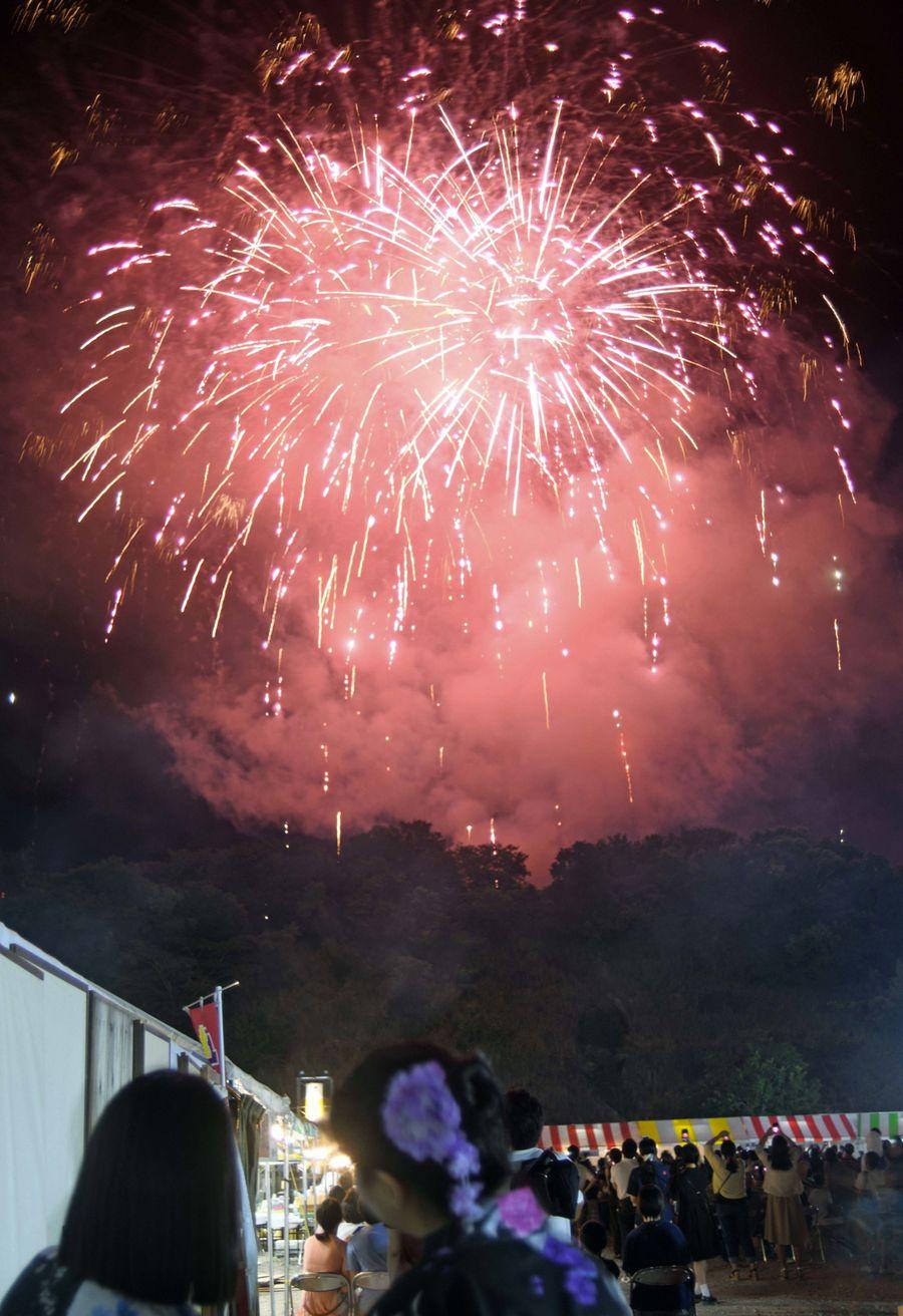 土佐のまほろば祭りを彩る名物花火。今年は4週にわたって打ち上げる(2019年8月3日、南国市の吾岡山文化の森)